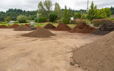 Our Soil Blends, and the Basics of Good Soil